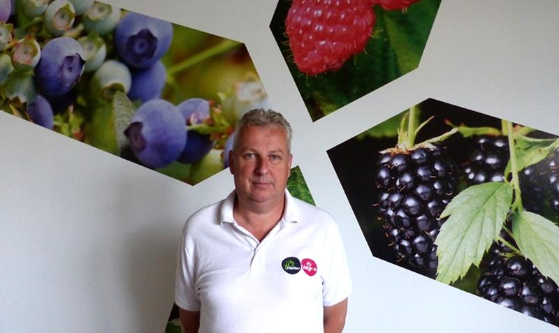 Entrevista a Jan van Bergeijk, nuestro productor de frambuesas