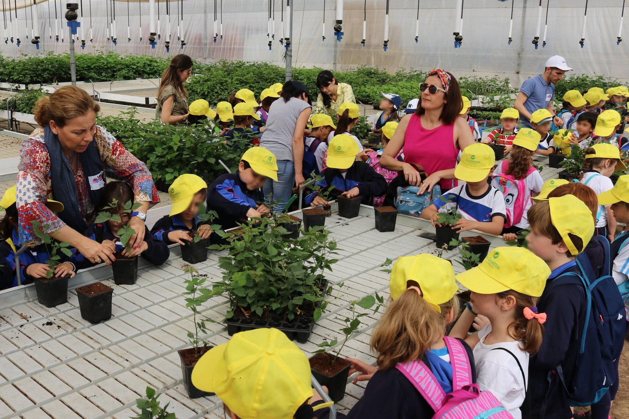 Visita del Colegio Colón Maristas a nuestros cultivos